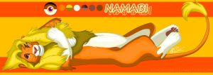 Namabi: Character Sheet 2012 by KingSimba