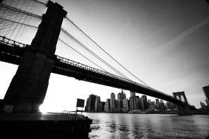 brooklyn bridge by toko