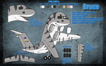 Bruce The Globemaster by C17-Bruce