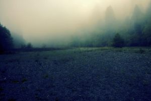 Foggy Morning 2 by blakelemmons