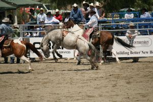 rodeo 28 by xbr0kendevotion