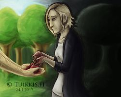 Fix My Heart by Tuikkis