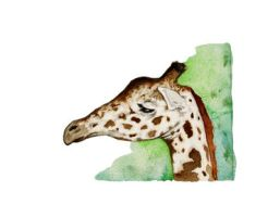 Watercolor Giraffe print by JMarcDodsonJr