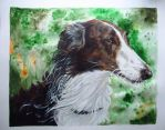 Borzoi by HonestAnxiety