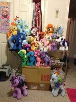 Pony Plush Collection by teekyo