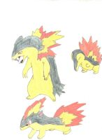 Cindaquil Quilava Typhlosion by Blixt4