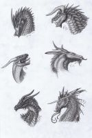 Dragon heads by Dragonlover92