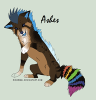 Ashes .:Ref:. by TinyWolfy