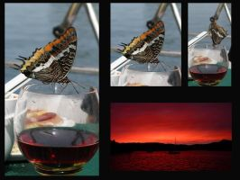 Butterfly and sunset by Menuja