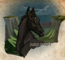 # 2288 Dark Knight by Templado