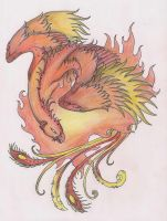 Phoenix by terminatress