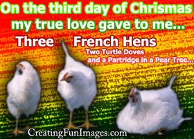 3 french hens 2 by Rebecca329