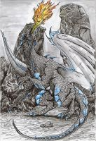 Grey dragon by TicChallis