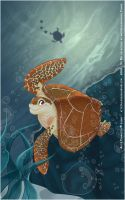 Sea Turtle Contest by Lilhor