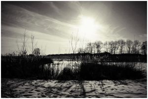 a walk in the fresh snow by simoner