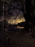 The swing by Baloba
