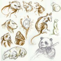 More Animal Wildlife Drawings by GoblinQueeen
