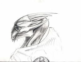 turians doodle part 1 by sister-in-arms