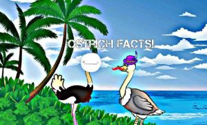 Ostrich facts With Markiplier and Cry! by Caitynak