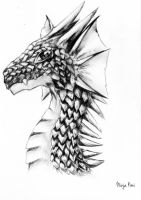 Dragon (Head) by NinjaKimi