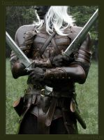 Drizzt Do'Urden -  lone by farmer-bootoshysa