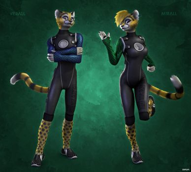 Verall and Mirall redesign by zorryn