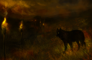 Night flames by Wolnir