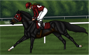 The first race by Rosenhill