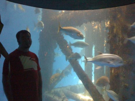 John at the Aquarium by woodaelphe79