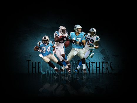 The Carolina Panthers by metalhdmh