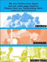 fundraising sports flyer by delphiniadd