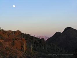 AZ- moonrise in the desert by Kimi-Parks