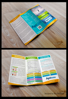 Brochure for Aptivaa Consulting Solutions by leila1605
