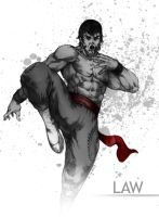 tekken LAW by DXSinfinite