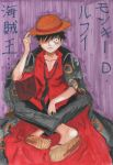 Luffy- Strong World by evaienna