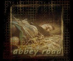 Tori Amos - Abbey Road by Social-Misfit