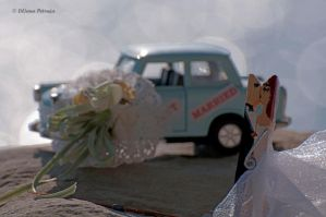 Just married by lpetrusa