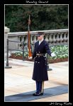 Standing Guard by jhg162