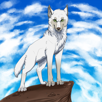 Wolf Standing Majestically by ZacharyWolf
