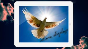 1080p Dove Wallpaper iPad 3 (White edition) by wahashmi
