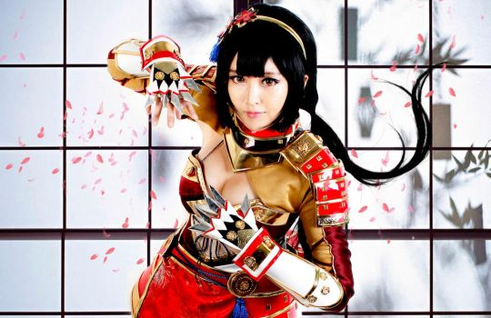 Samurai Warriors 4 : Naotora Ii by pinkyluxun