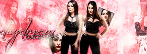 +The bella Twins Portada by Who-Owns-My-Heart2