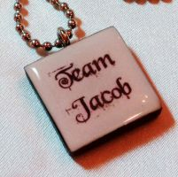 Twilight jewelry-Team Jacob by wickedgems