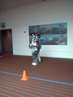 AnthroCon 2012: Draces by murkrowzy