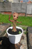 Potted Groot by JWBeyond