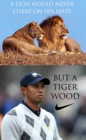 Tiger Woods: Nike Ad by mexicanpryde2000