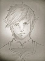 Link In Real Life by animaniake