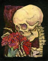 Skeleton with Carnation by cfigue20
