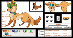 Asher ref by Peculiar-NomNom