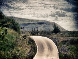 the road by C1olo